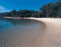14_Orso_spiaggia2_RGB_BASSA