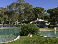 Is Morus piscina