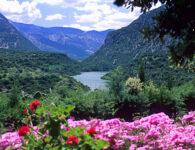 Su Gologone 4 fiume Cedrino