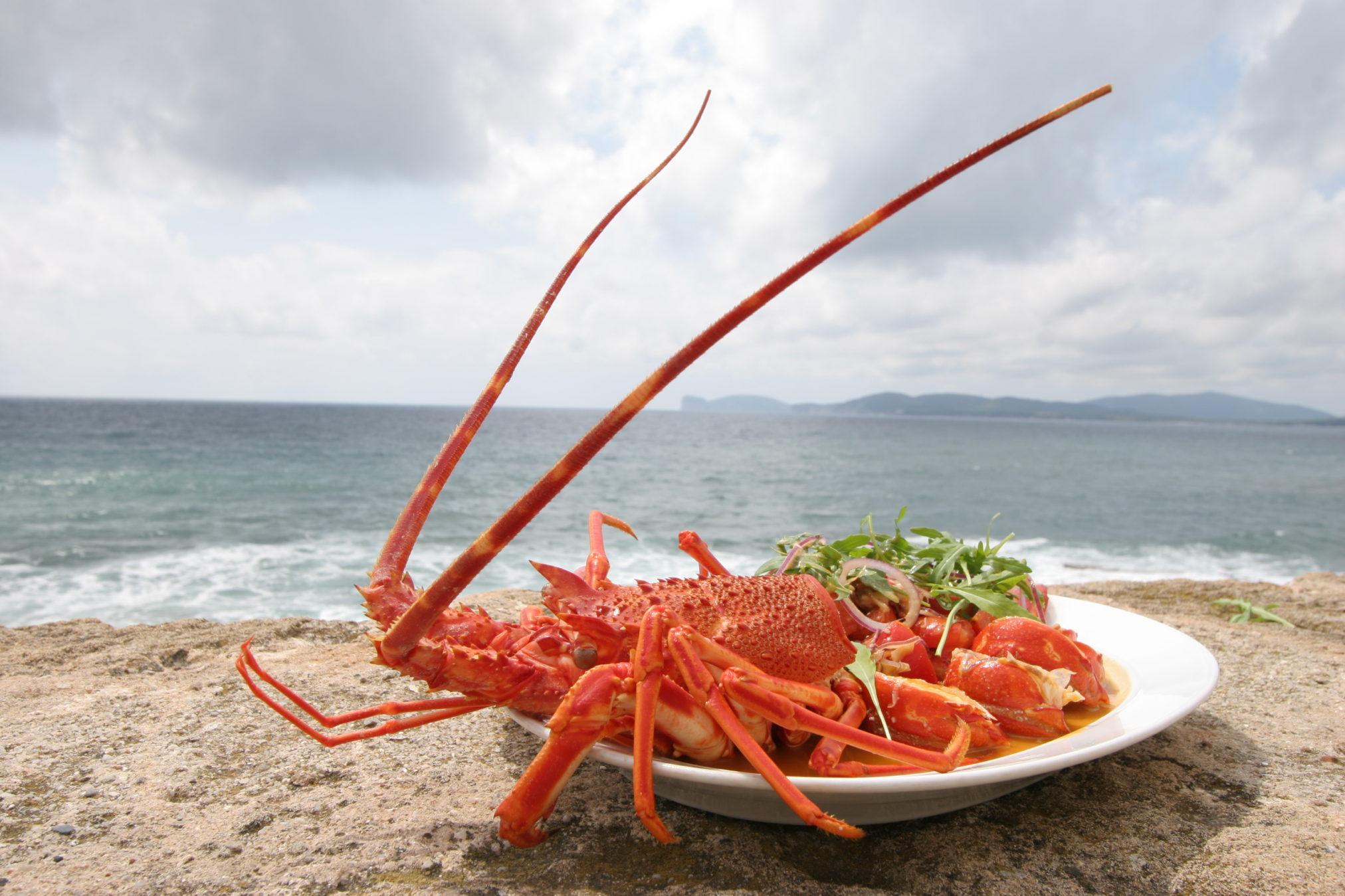 Visit Sardinia VIP   Alghero Seafood Experience